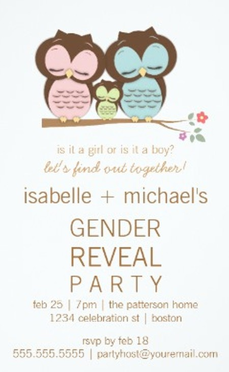 Gender Reveal Party Invitation Sample 2